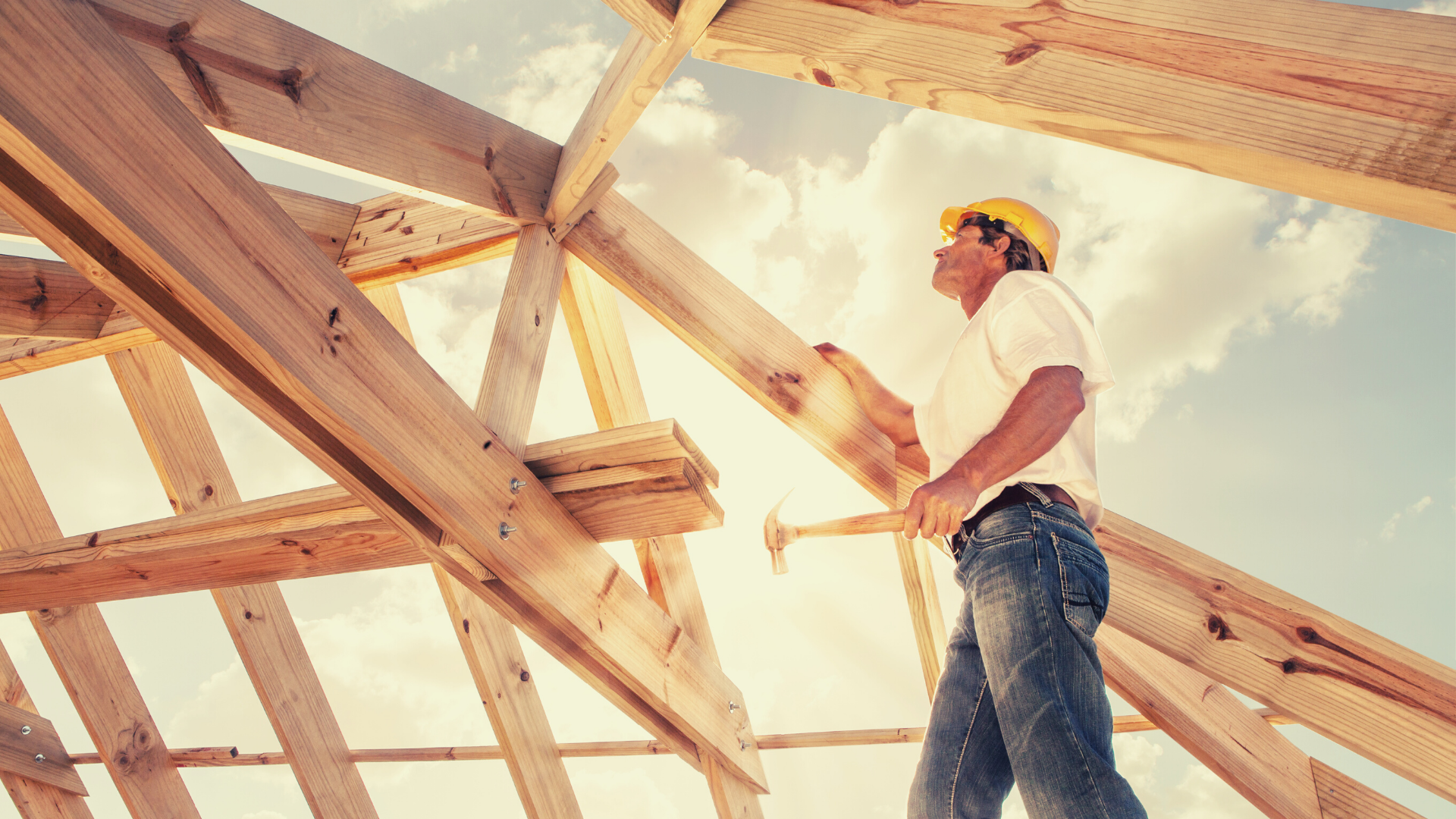 Build to rent scheme cuts NSW land